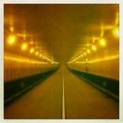 2nd Aug 2018 - The yellow tunnel