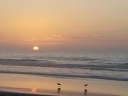 31st Jul 2018 - Sunrise