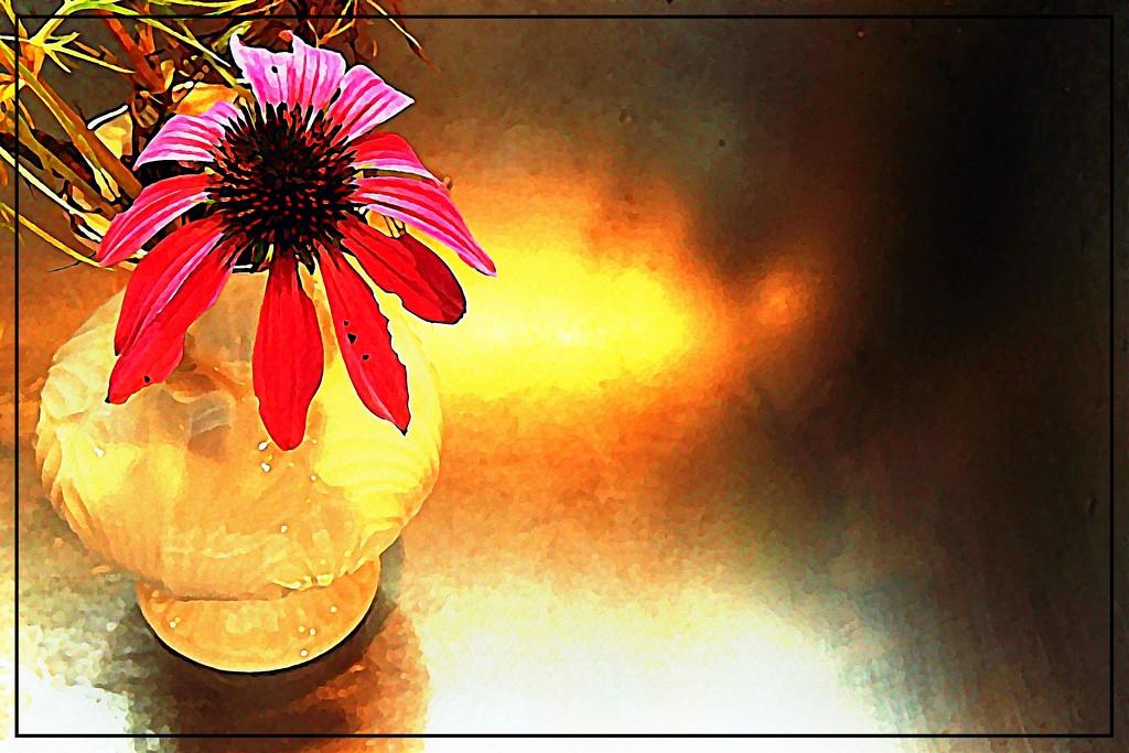 A Coneflower in a Little White Vase by olivetreeann