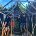Dismantling the greenhouse