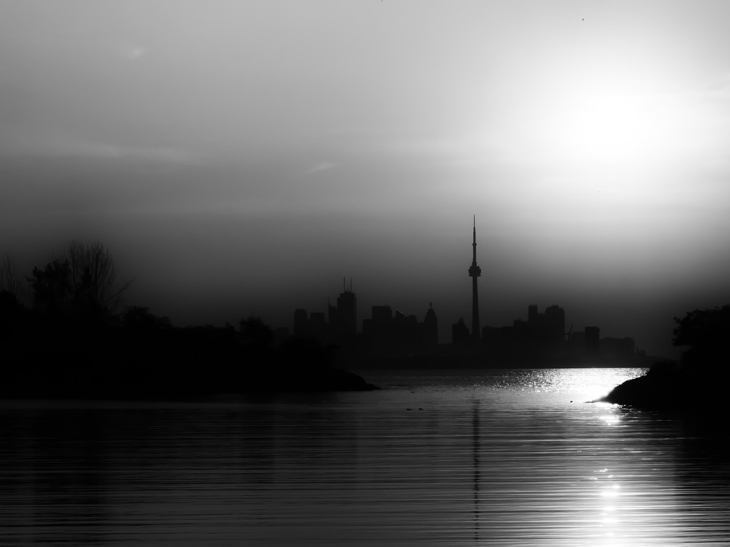 good morning Toronto! by northy