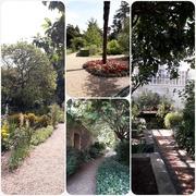 6th Aug 2018 - Peckover House