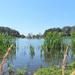 DSCN1355 lake in the dunes