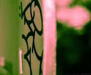 2nd Aug 2018 - flamingo graffiti