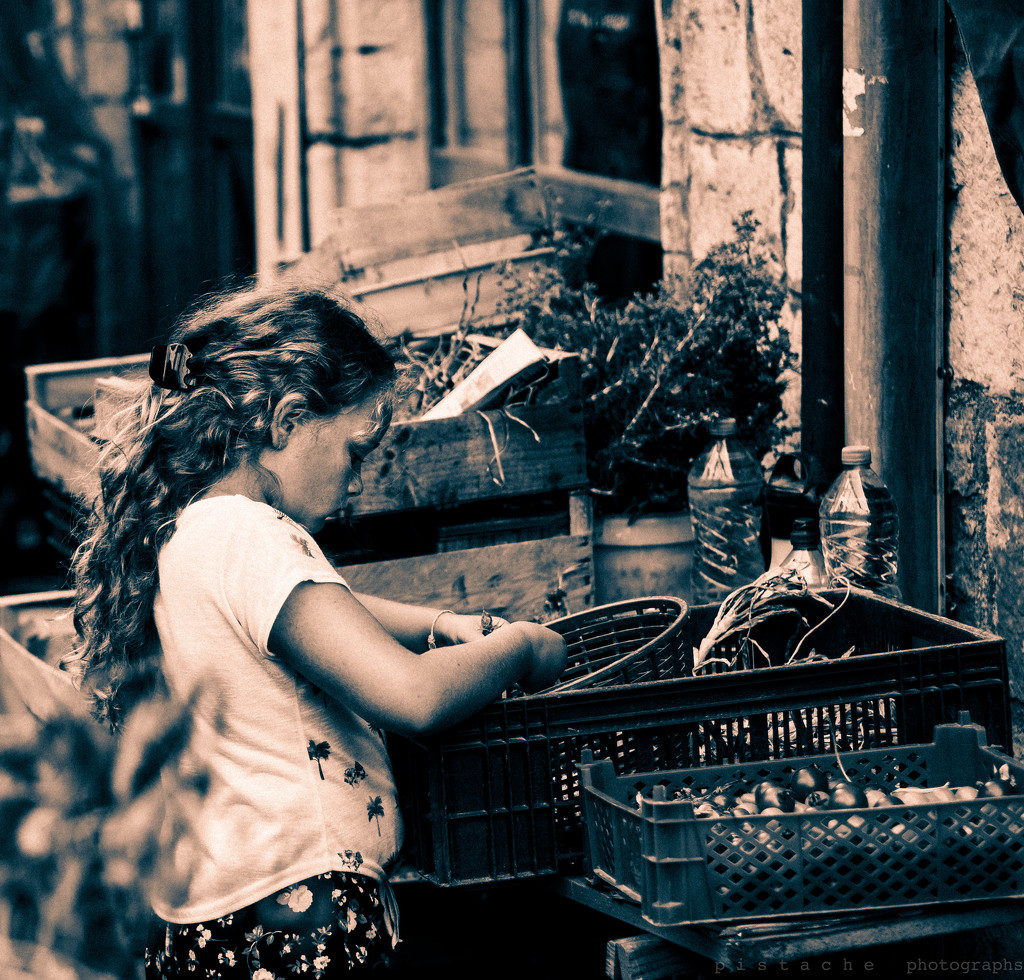 helping papa at the market by pistache