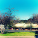 Berrima street view