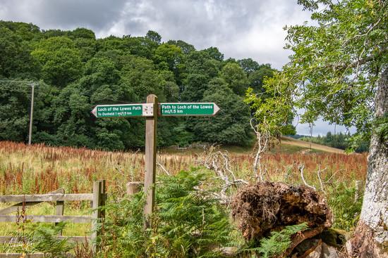 Signposting the way by yorkshirekiwi