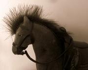 8th Aug 2018 - (Mo) Hawk The Horse