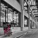 Urban Shopper