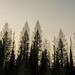 Smokey Layers in Glacier Park