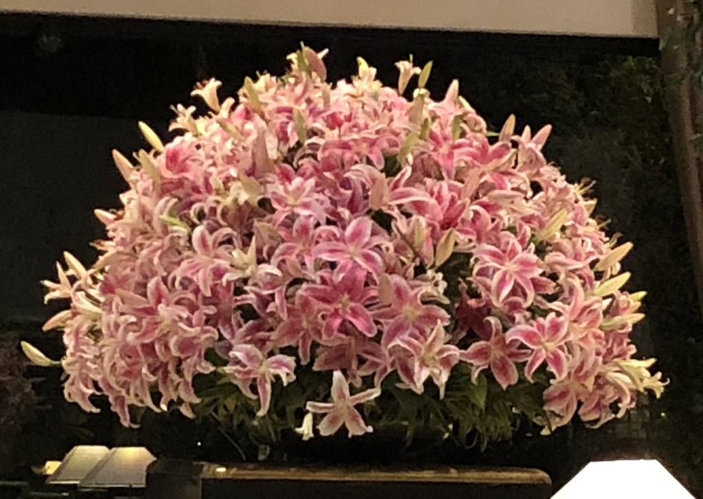 Lilies  by veengupta