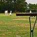 cricket at the village - 2