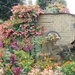 Floral tank