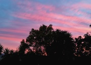 16th Aug 2018 - Pink Sunrise