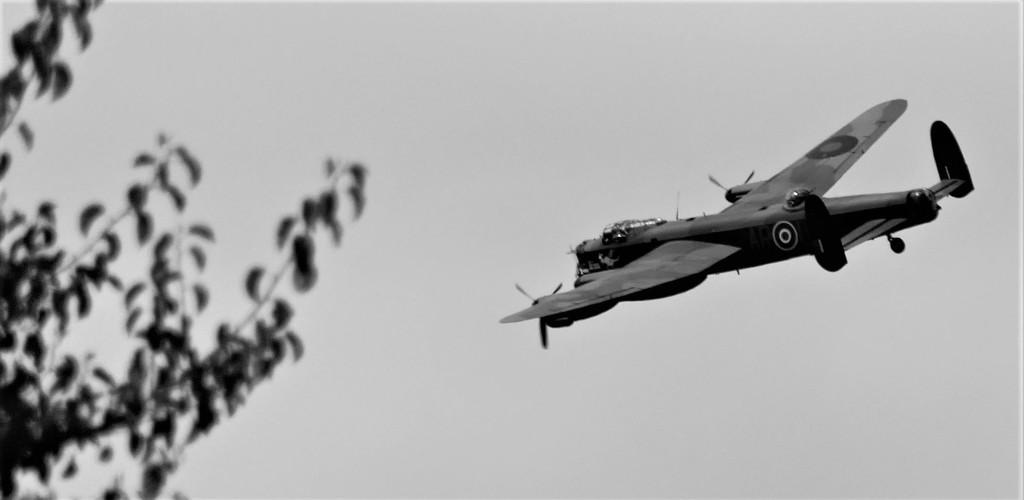 Lancaster Bomber by carole_sandford