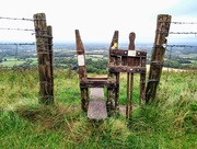 16th Aug 2018 - Stile and Dog Gate at Ditchling Beacon