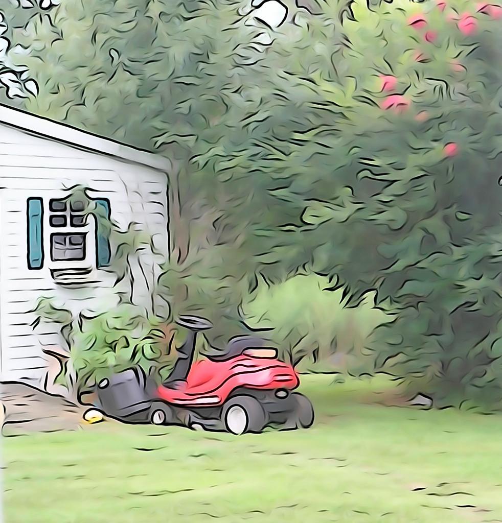 "The ""new"" backyard by randystreat"