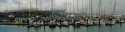 18th Aug 2018 - Lyttelton Harbour NZ