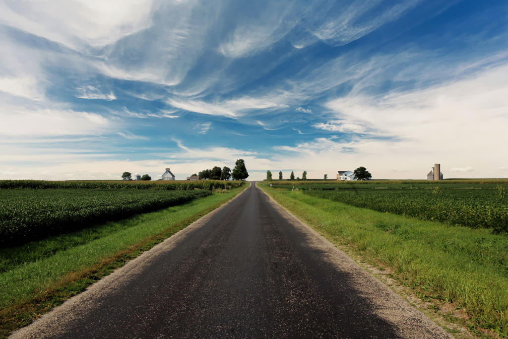 Farm Road In Central Illinois by randy23
