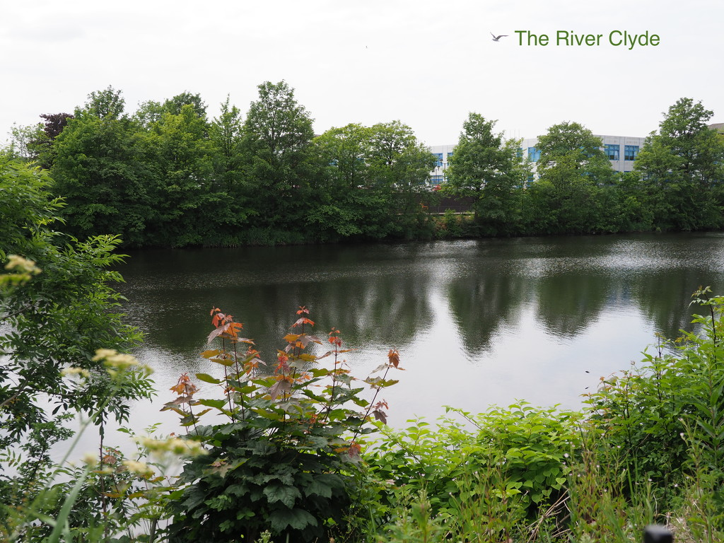 The River Clyde by selkie