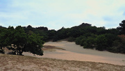 19th Aug 2018 - dunes and woods