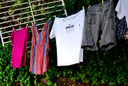 19th Aug 2018 - Hanging the Laundry