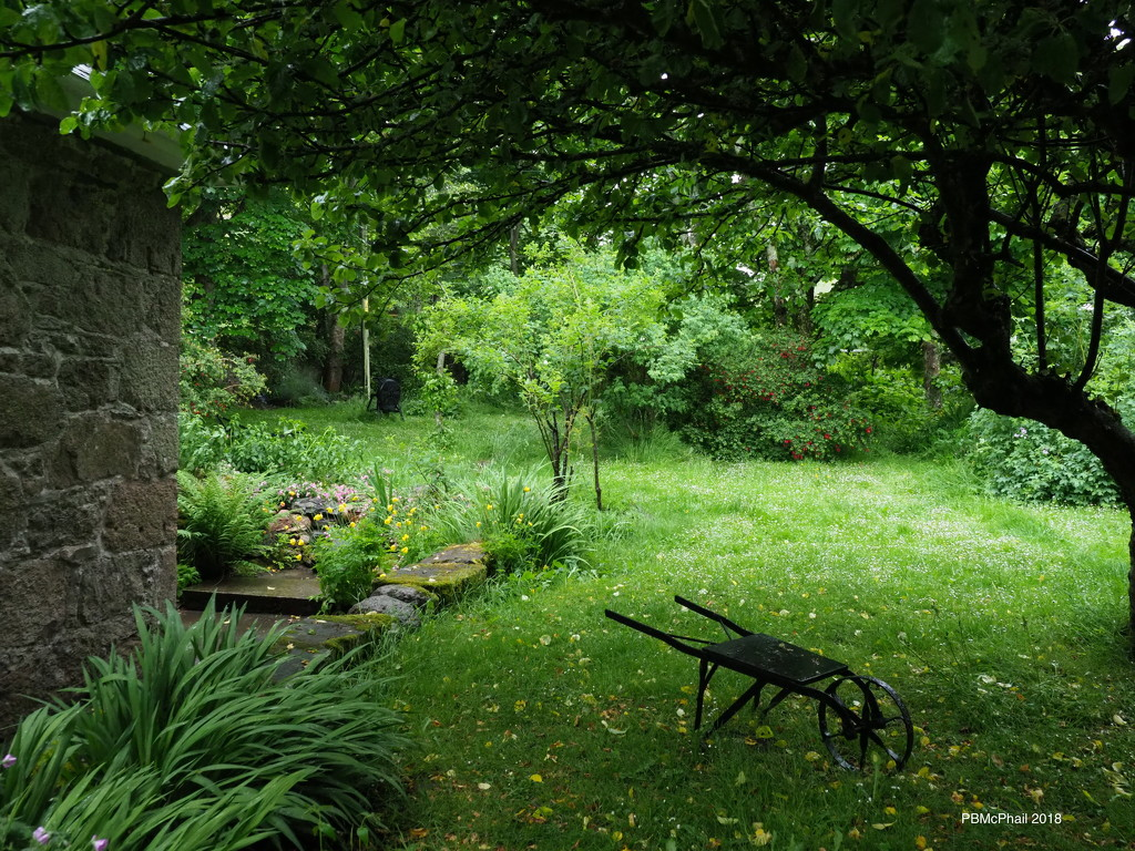 Iona Garden by selkie