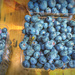blueberries at the farm stand