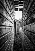 20th Aug 2018 - hidden outhouse