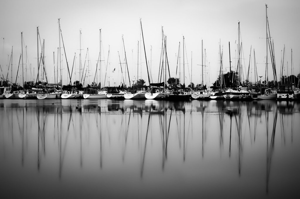boats... by northy