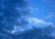 5th Jan 2011 - Storm Clouds