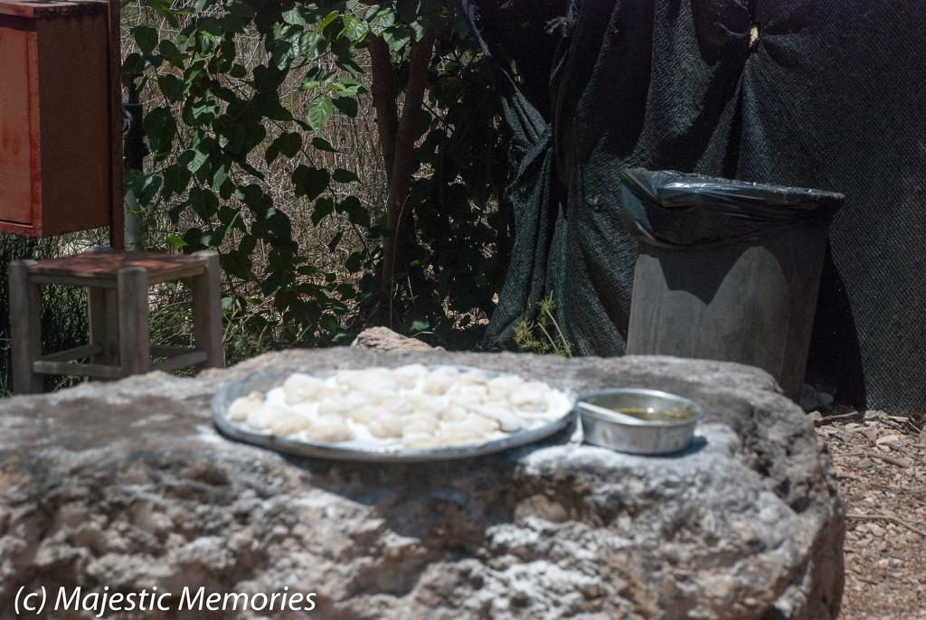 Kfar Kedem visit-7 by mgbio