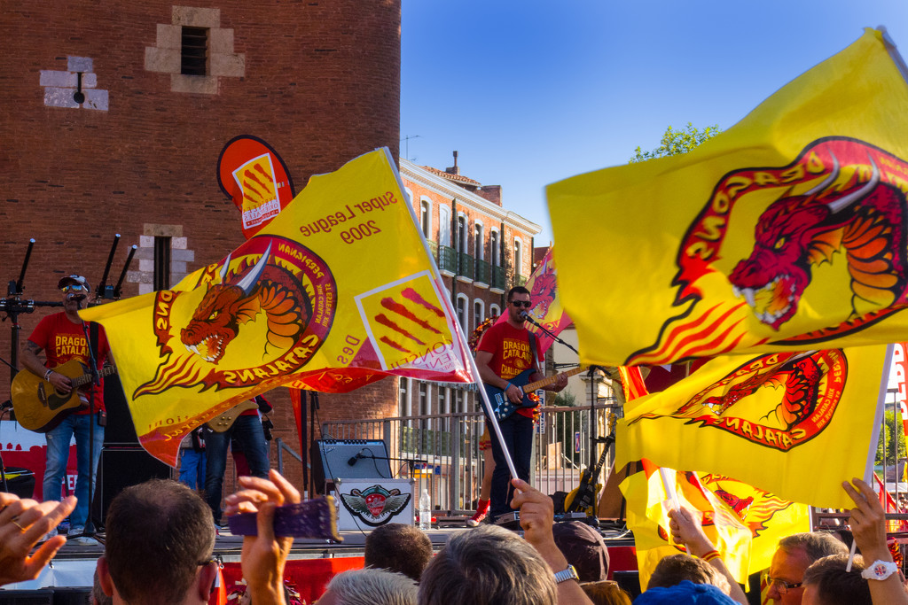 Dragons Catalans by laroque
