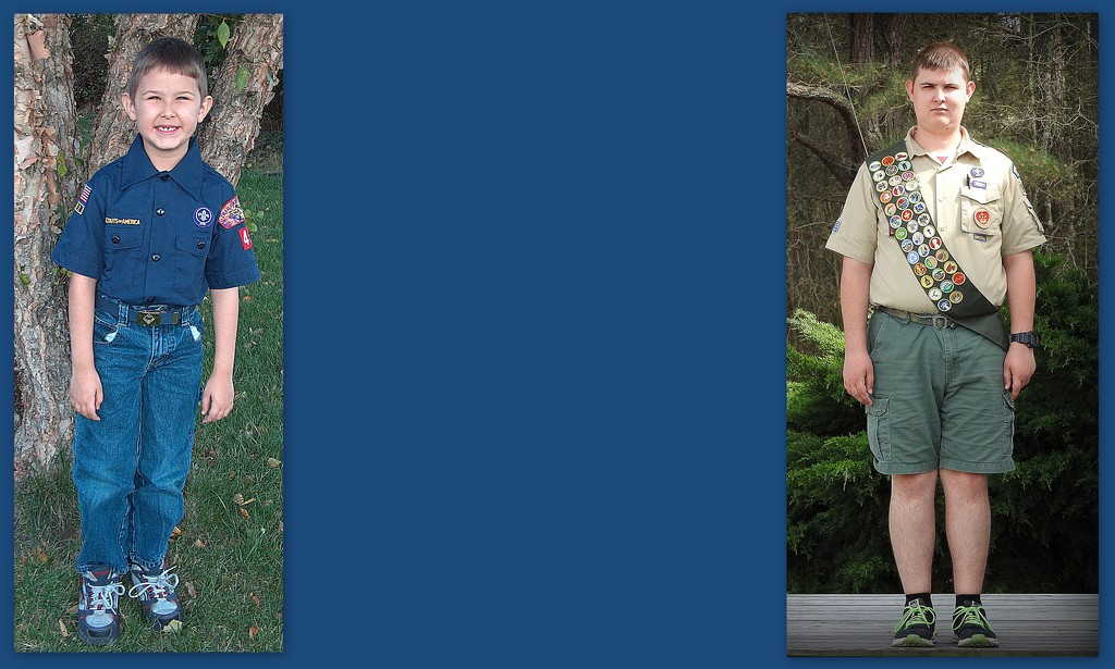 From Tiger Cub to Eagle Scout! by homeschoolmom