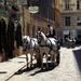 Historic Vienna by cmp