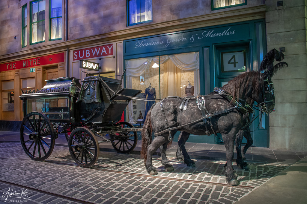 Horsedrawn Hearse by yorkshirekiwi