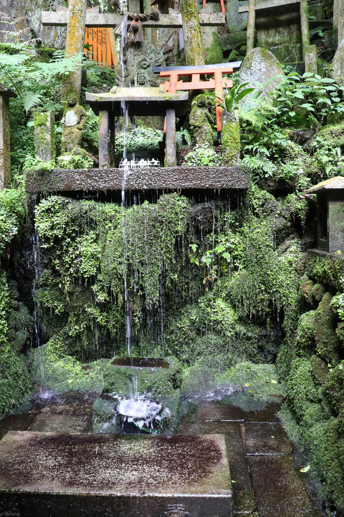 Holy shower by flyrobin