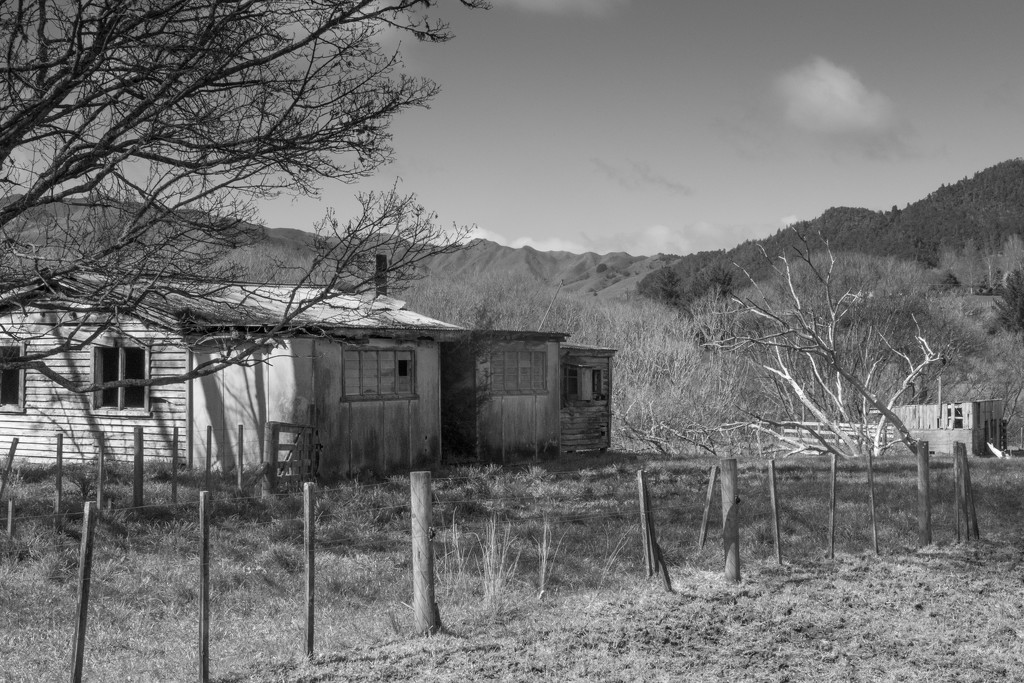 Black and White photo of old shed by creative_shots