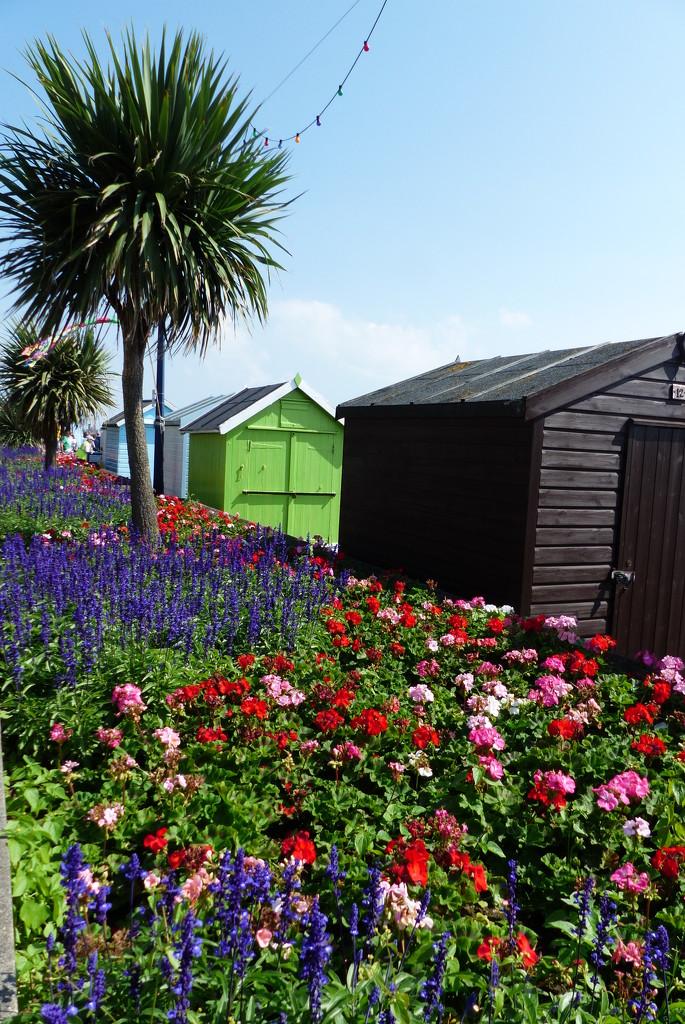 Seafront colour by judithdeacon