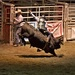 LHG_0612 Bullrider by rontu