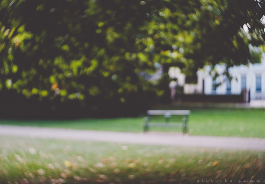 it's a walk in the park by pistache