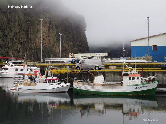 Heimaey Harbour by selkie