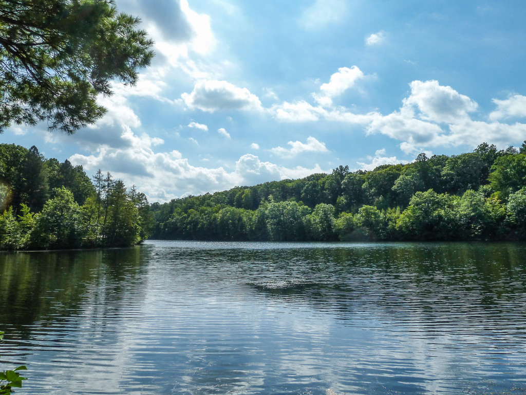 A hot day at the reservoir. by batfish