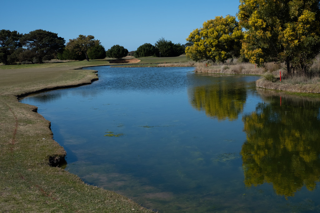 SOOC8 Reflections by golftragic