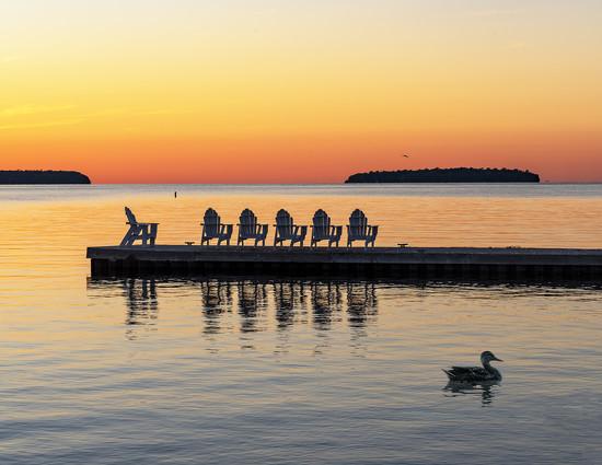sunset duck by myhrhelper