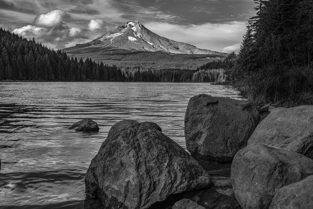 Mt Hood Across Trillium Lake by taffy