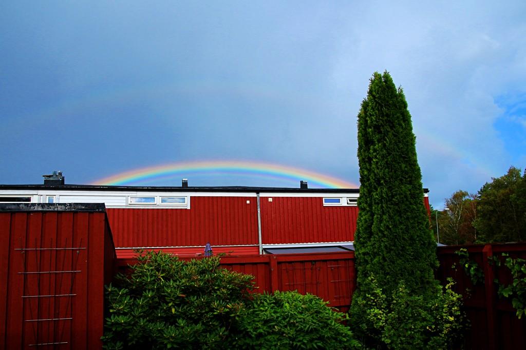 Rainbows over the rooflines by kiwinanna