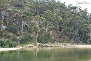 13th Sep 2018 - Christopher Johnson Memorial Park, Kingston Beach, Tasmania, Australia