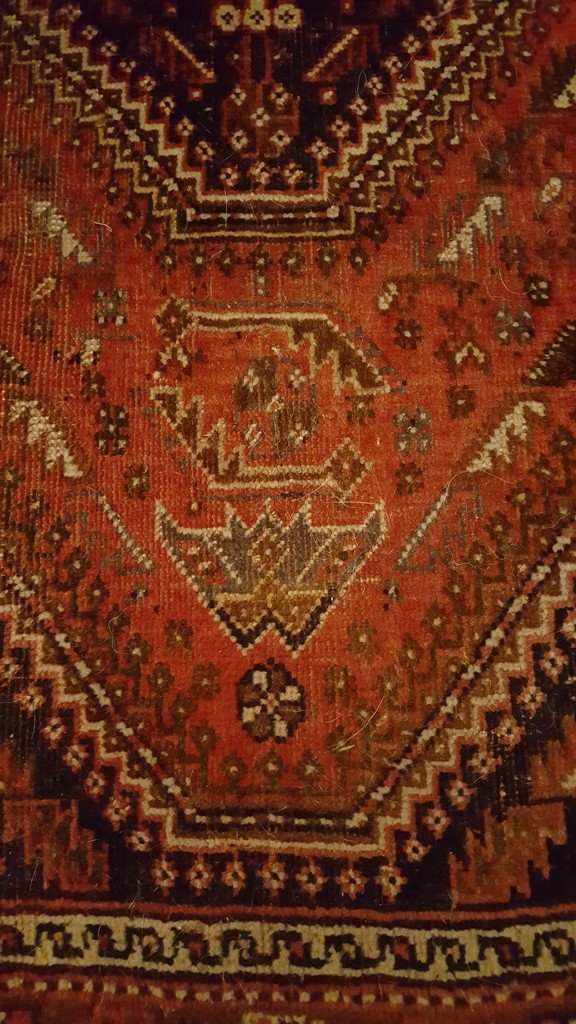 Rug by geezerbird