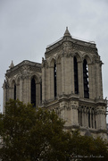 11th Sep 2018 - Notre Dame
